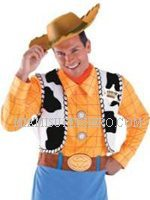 toy-story-woody-character-party