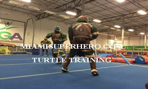ninja turtle character kids event