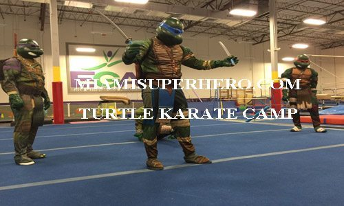 looking for ninja turtle costume rental
