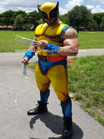 hire-wolverine-characters-party