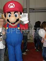 mario bothers character party