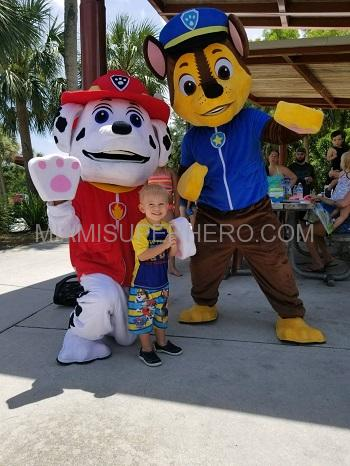 paw patrol chase and paw patrol marshal party character