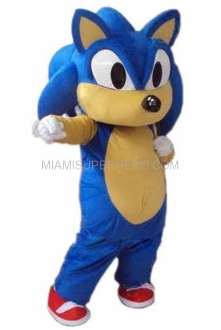 sonic hedge hog character