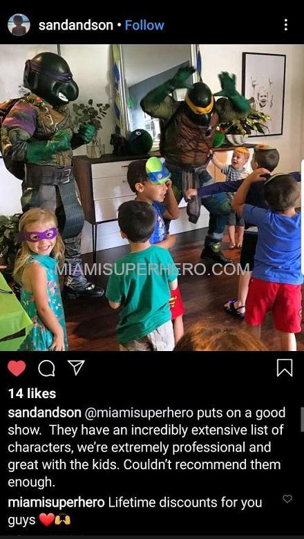 hire ninja turtle characters