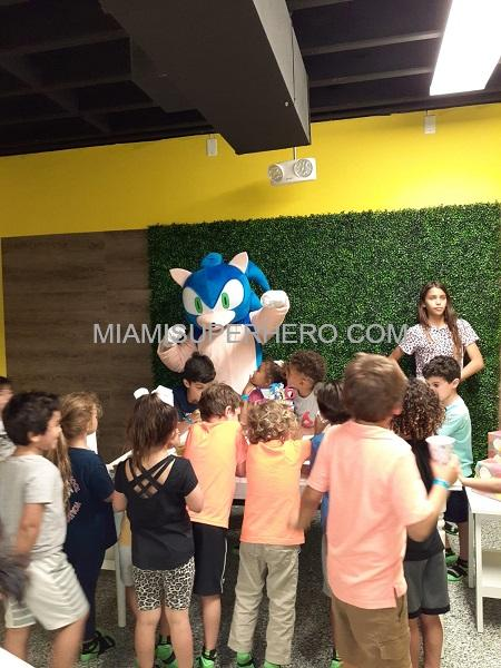 Sonic Hedgehog Birthday Party