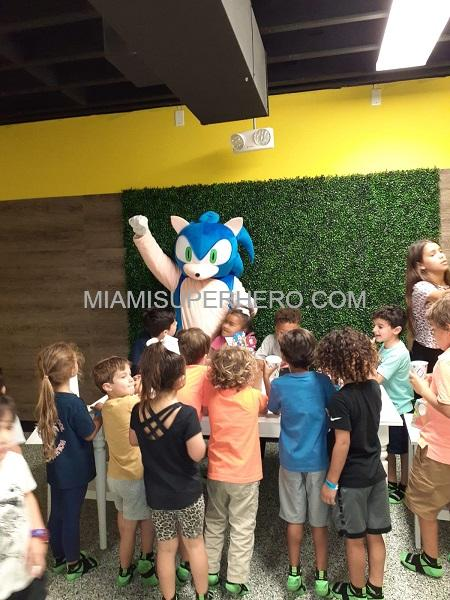 sonic hedgehog hire  miami superhero
