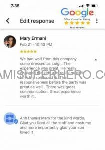 miamisuperhero review mario brothers